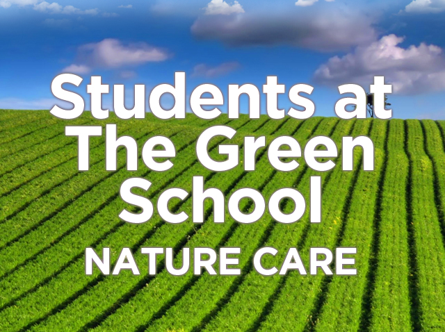 The-Green-School-insert.jpg
